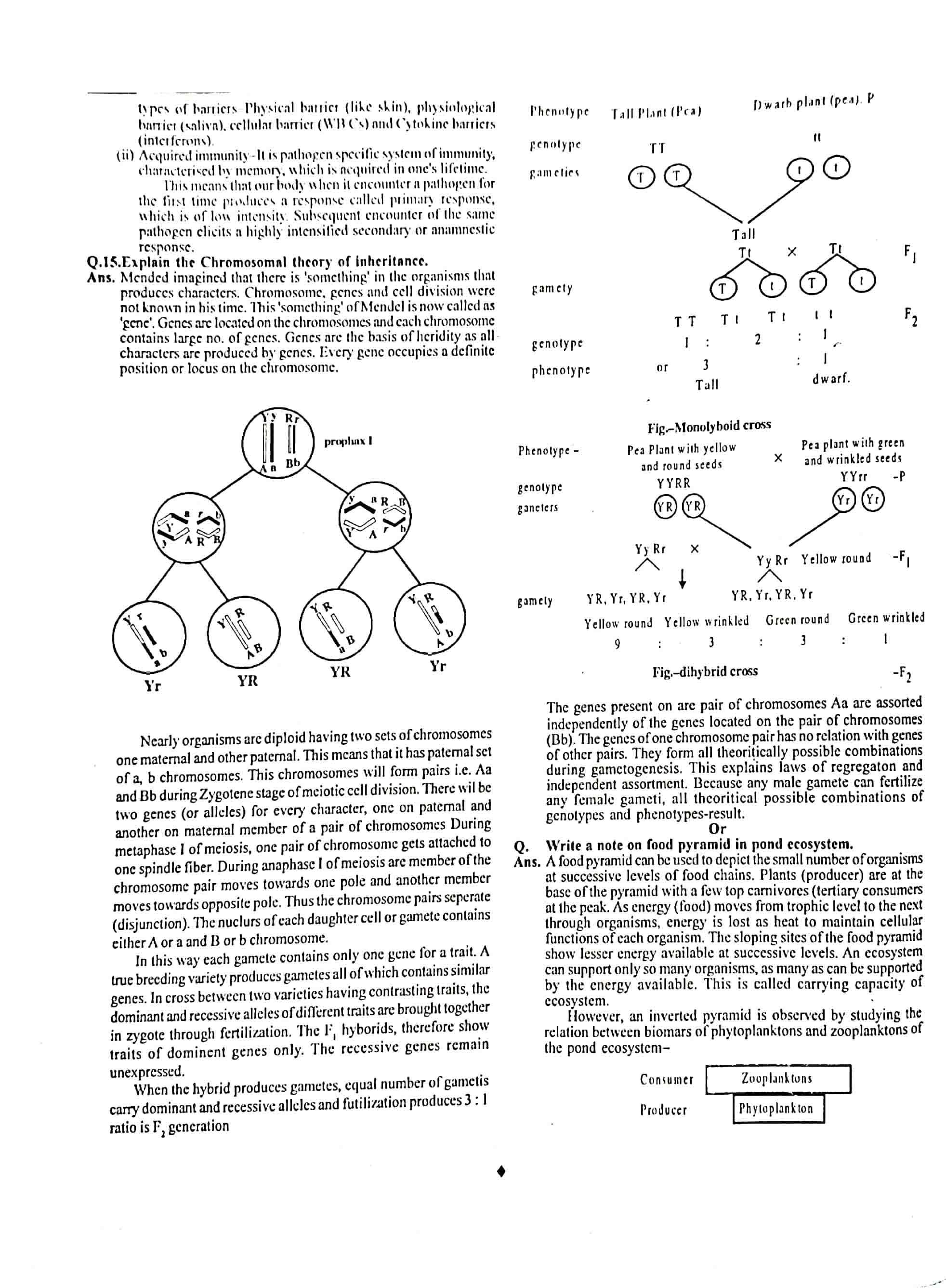 JAC Class 12 biology 2012 Question Paper 04