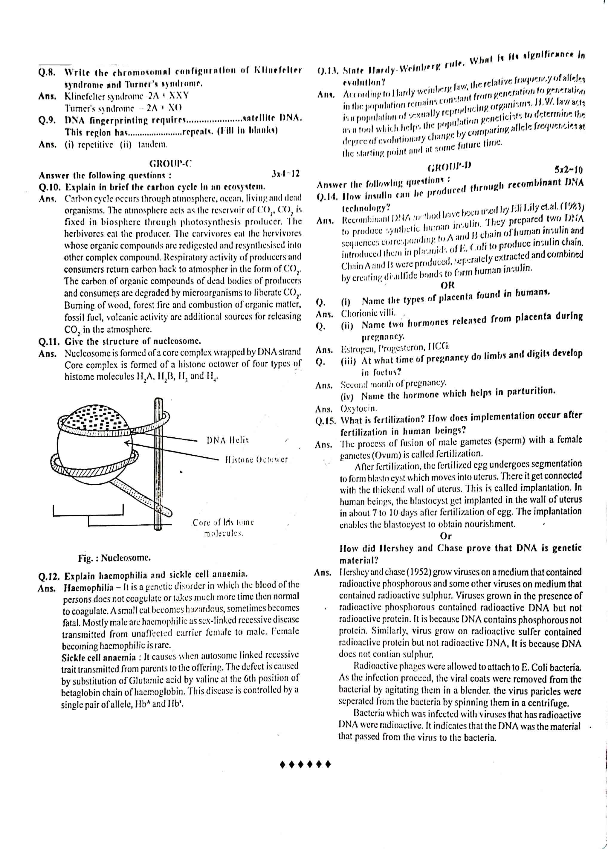 JAC Class 12 biology 2013 Question Paper 03