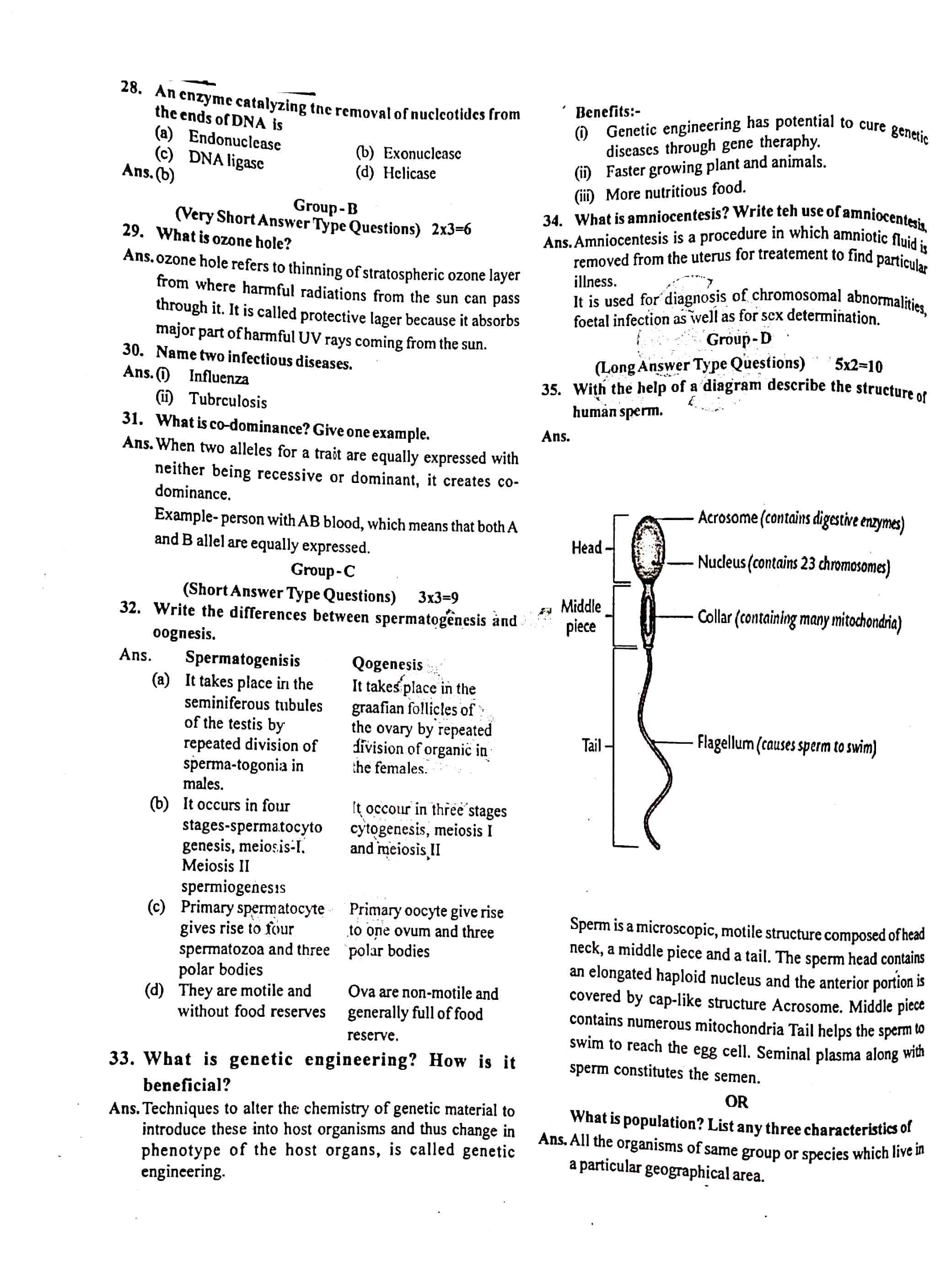 JAC Class 12 biology 2020 Question Paper 04